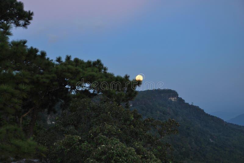 Lua cheia em Phu Kradueng de Tailândia imagem de stock