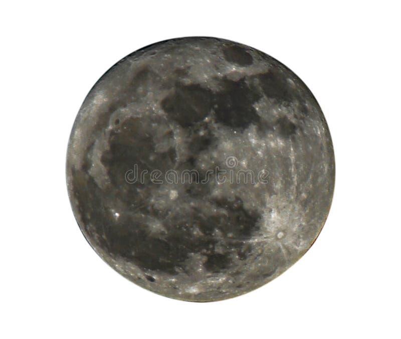 Lua cheia isolada no fundo branco, trajetos de grampeamento foto de stock royalty free