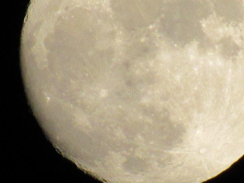 Lua cheia na noite fotos de stock