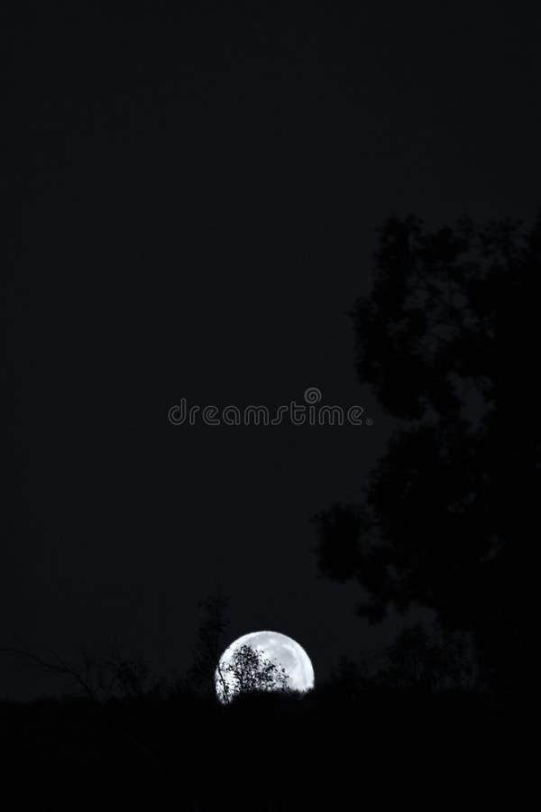 Lua cheia que aumenta sobre a garganta em preto e branco imagem de stock