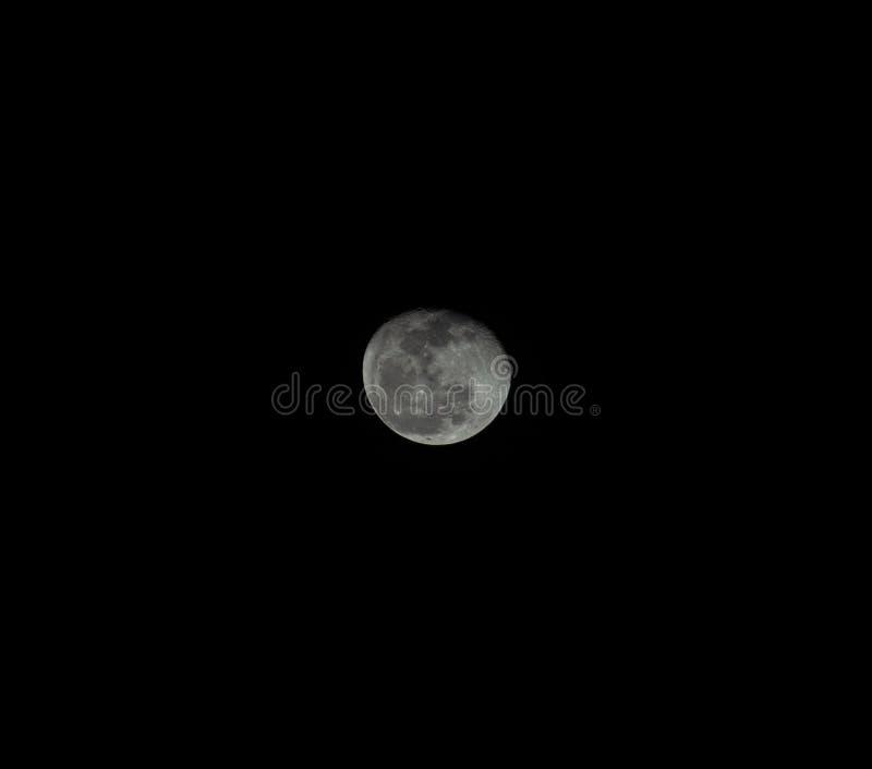 Lua cheia que tem um fundo preto fotos de stock royalty free