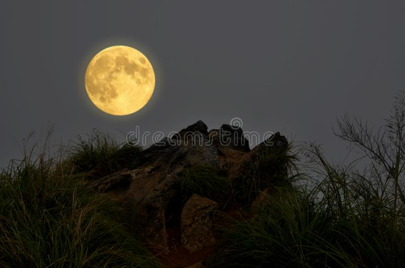 Lua cheia romântica sobre o penhasco da rocha com grama verde imagem de stock