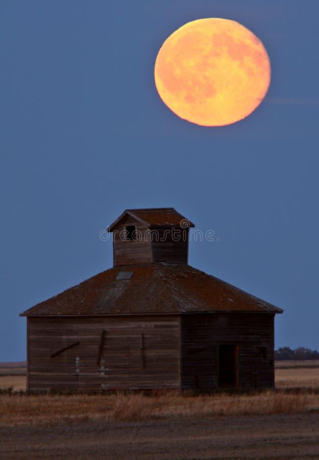 Lua cheia sobre o celeiro velho de Saskatchewan imagem de stock