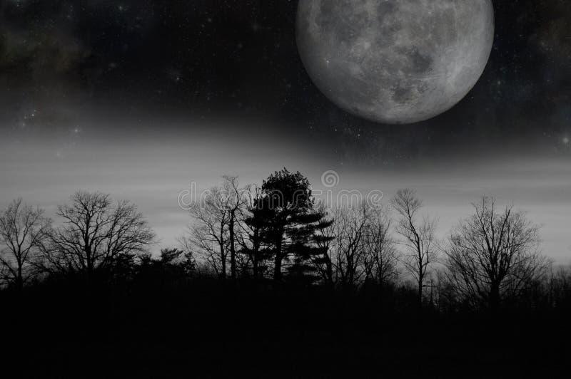 Lua crepuscular cinzenta fotografia de stock royalty free