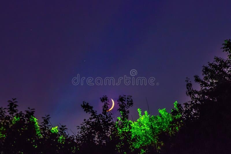 Lua da paisagem da noite fotos de stock royalty free