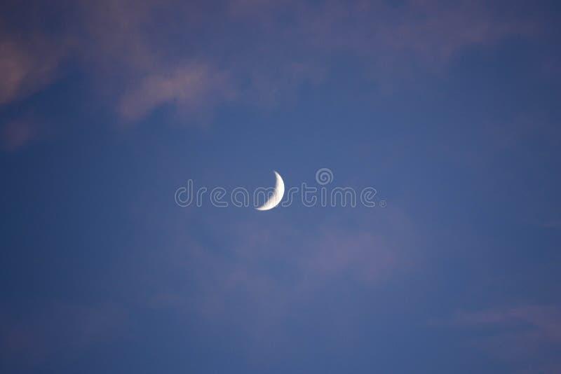 Lua de Crecent em um céu azul fotos de stock royalty free