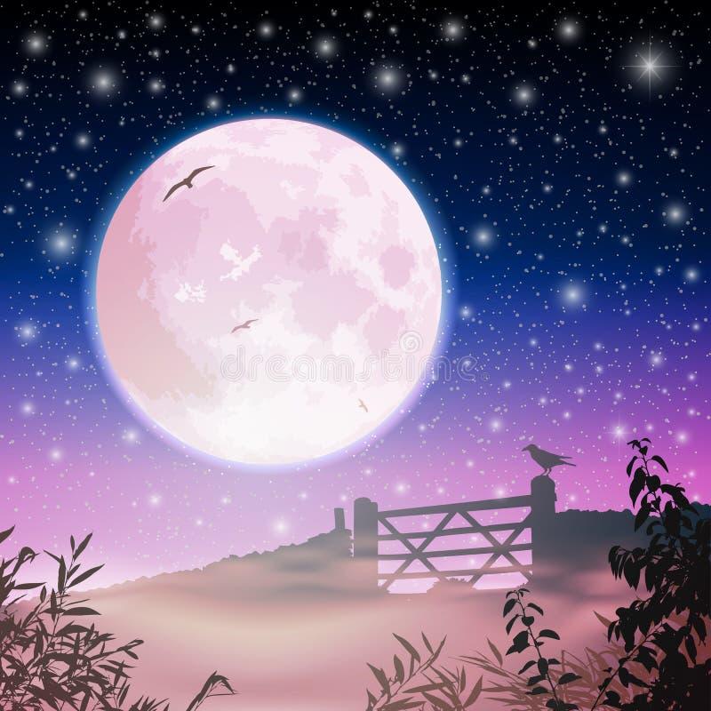 Lua e céu nocturno ilustração stock