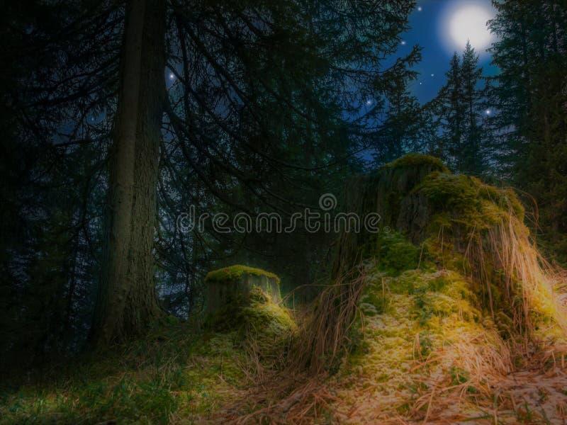 Lua e estrelas foto de stock