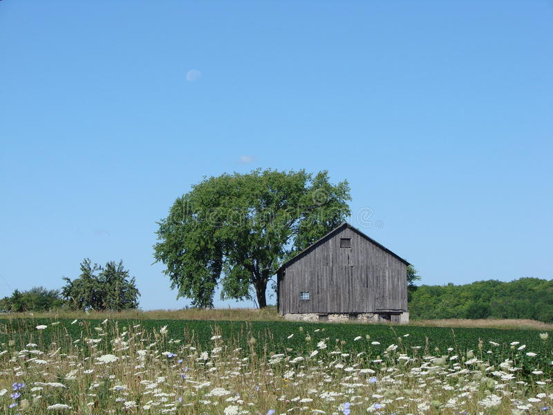 Lua sobre a exploração agrícola fotografia de stock