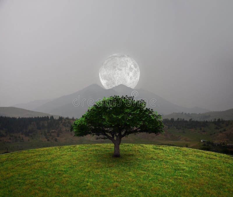 Lua sobre montanhas foto de stock royalty free