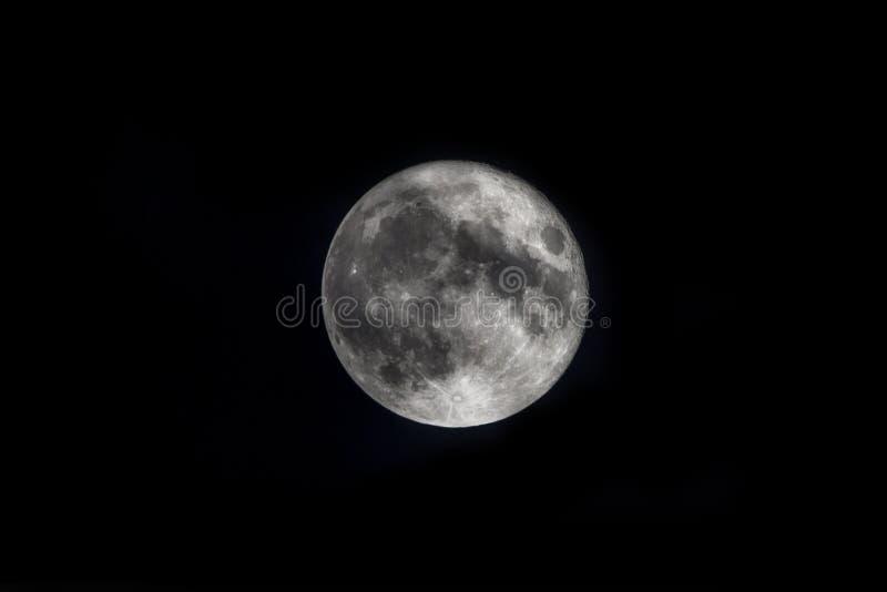Lua super no céu noturno fotografia de stock