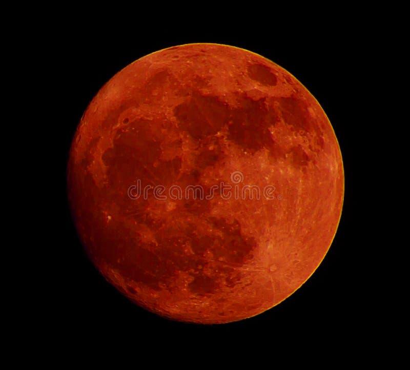 Lua vermelha, lua do sangue separada do fundo preto fotos de stock royalty free