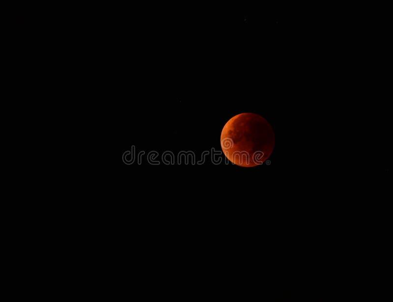 lua vermelha na noite do outono imagem de stock
