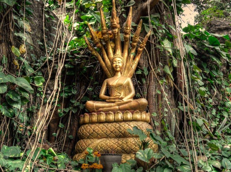 Luang Prabang en de Mekong Rivier van MT Phousi stock fotografie