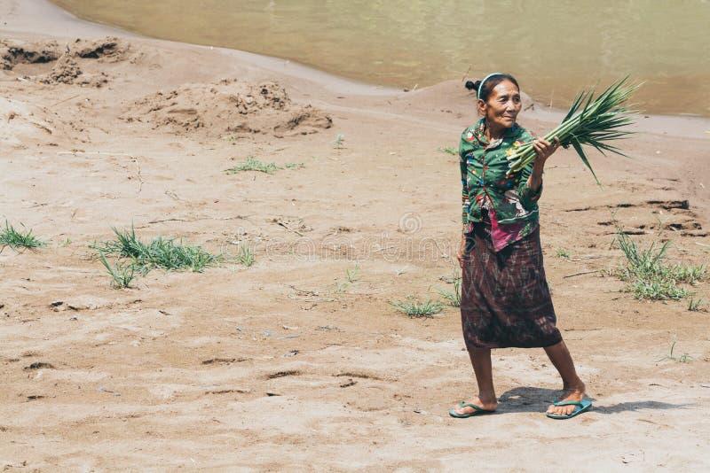 Luang Prabang, Laos - April 2019: Laotianische Frau trägt Stockblätter auf dem Flussufer lizenzfreie stockbilder