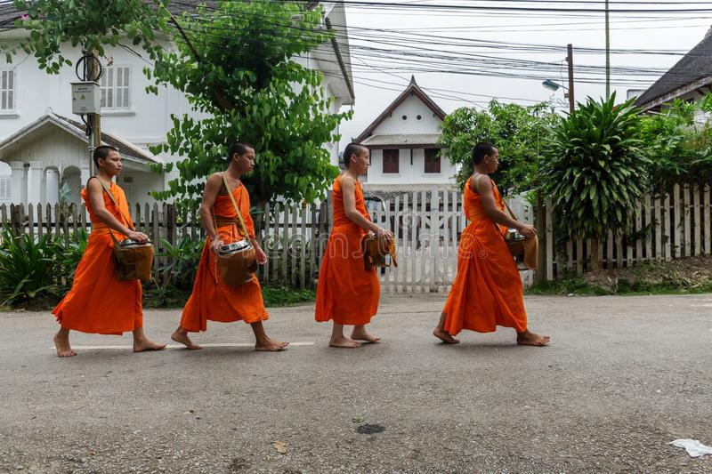 Four Buddhist monks collect alms in Luang Prabang, Laos stock images