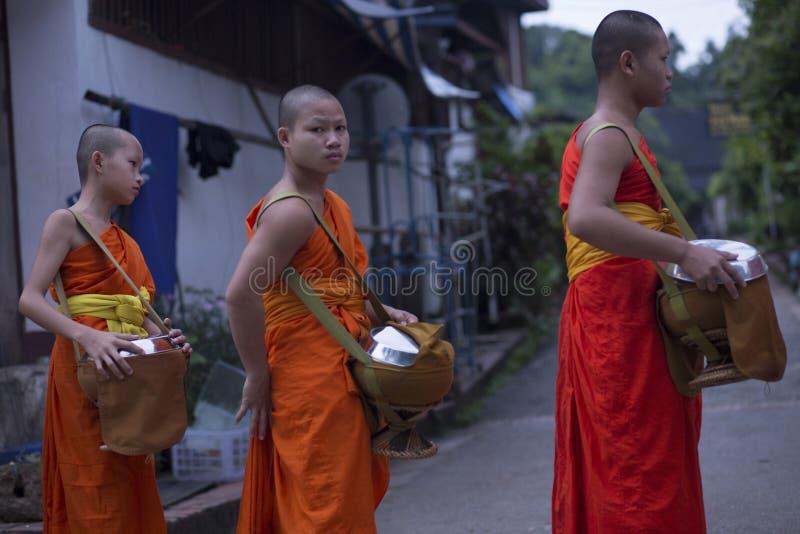 Luang Prabang, Laos, giovani monaci nelle elemosine che danno cerimonia, 16 fotografia stock