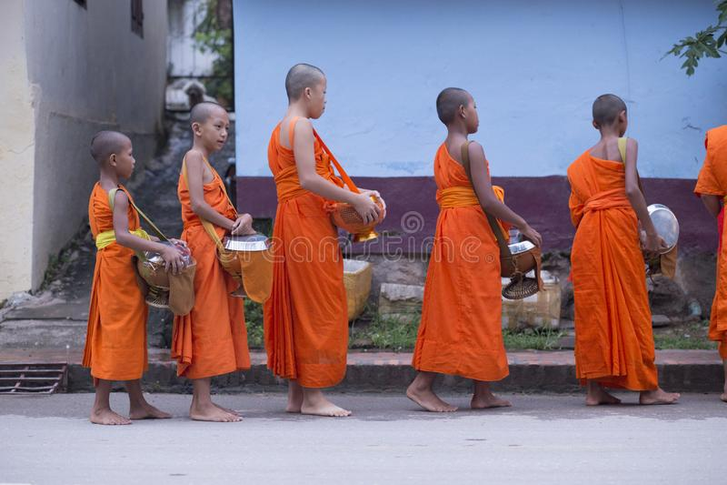Luang Prabang, Laos, giovani monaci nelle elemosine che danno cerimonia, 16 immagini stock