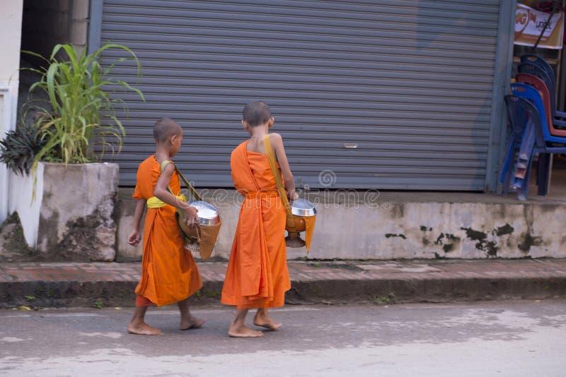 Luang Prabang, Laos, giovani monaci nelle elemosine che danno cerimonia, 16 fotografia stock libera da diritti