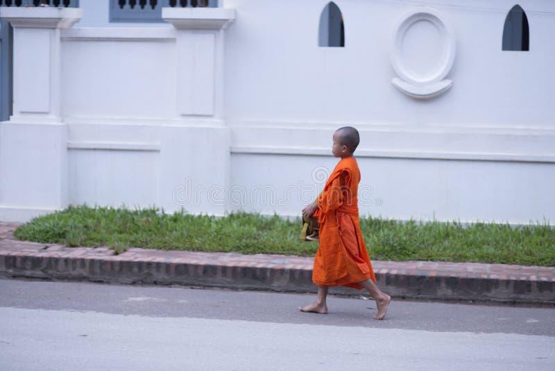 Luang Prabang, Laos, liten munk i allmosan som ger ceremoni, 16 royaltyfri fotografi