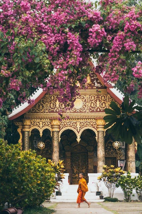 Luang Prabang, Laos - Maj 2019: Laotian buddistisk munk som framme går av Wat Pa Phai royaltyfria foton
