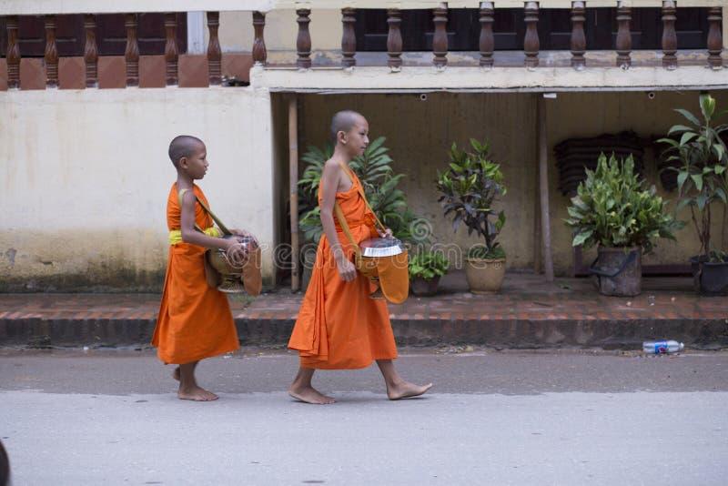 Luang Prabang, Laos, monaci del bambino nelle elemosine che danno cerimonia, 16 fotografia stock libera da diritti