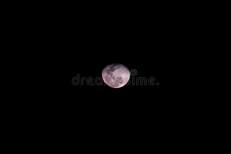 Luar do rosa da lua do centro da superfície do detalhe do contexto do fundo do preto da Lua cheia imagens de stock royalty free