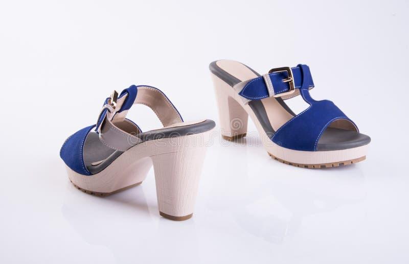 but lub błękitni kolor damy buty na tle obrazy stock