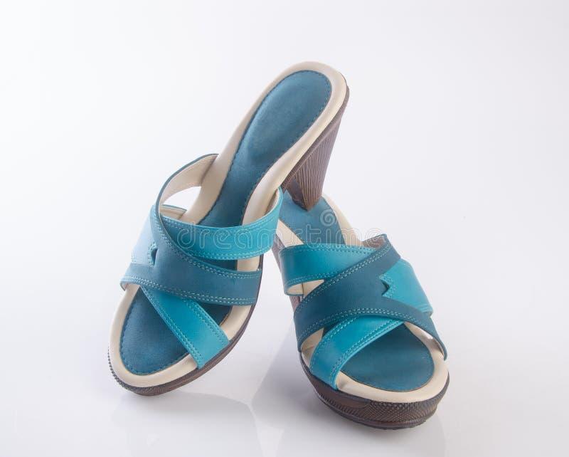 but lub błękitni kolor damy buty na tle obraz stock