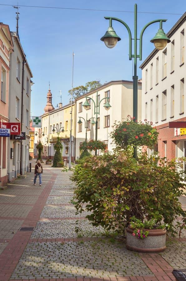 Lubliniec Town i Polen royaltyfria foton