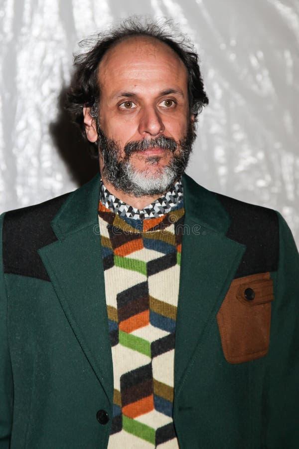 Luca Guadagnino стоковая фотография rf