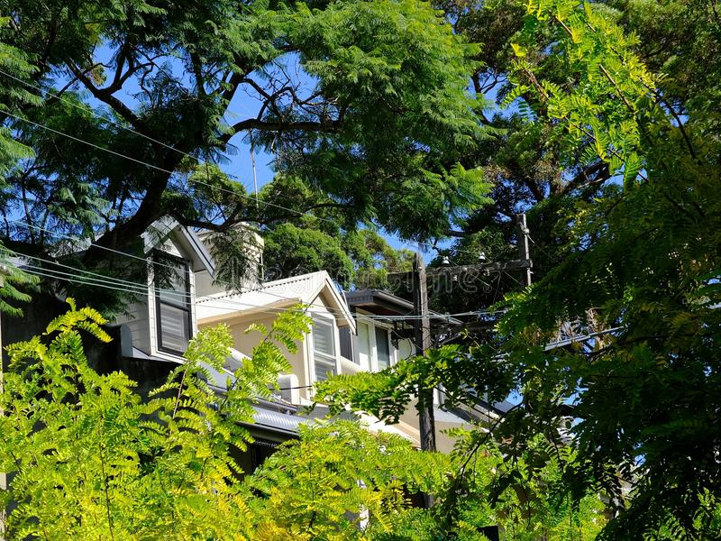Lucarnes sur un centre urbain Sydney Terrace House images stock