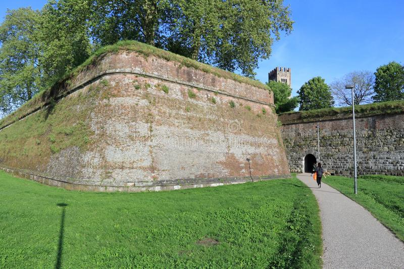 Lucca city walls royalty free stock photo
