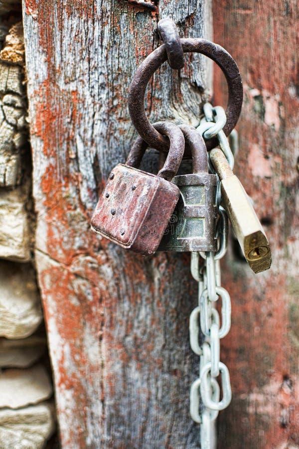 Lucchetti corrosi annata con la catena su un fondo antico del portone Rusty Padlocks anziano su una porta di legno fotografia stock libera da diritti