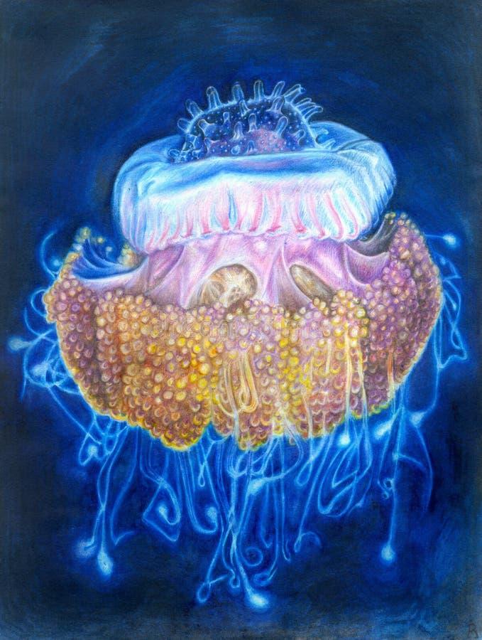 Luce del blu del ` delle meduse illustrazione vettoriale
