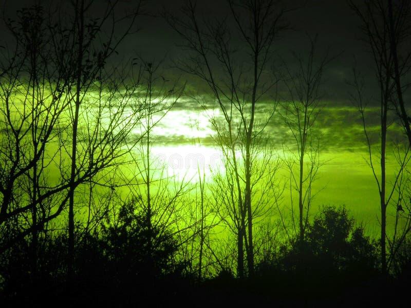 Luce della luna strana e lugubre fotografie stock libere da diritti