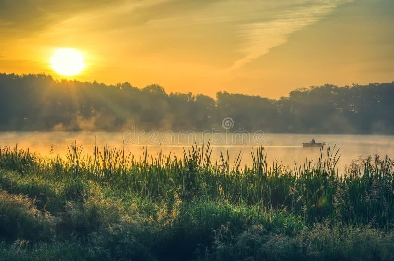 Luce della molla di mattina nel lago
