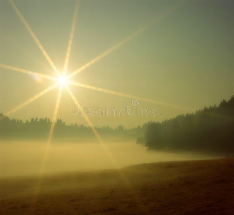 Luce di mattina sopra il lago immagini stock libere da diritti