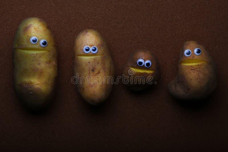 Luce di qualità dello studio del fronte della patata fotografia stock libera da diritti