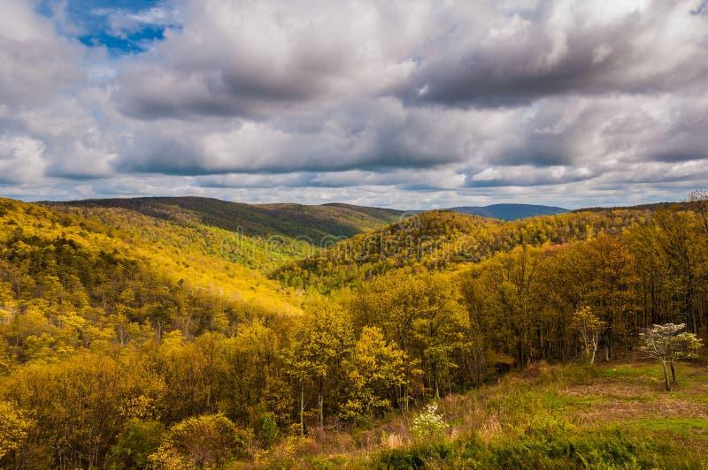 Luce di sera su Ridge Mountains blu visto nel parco nazionale di Shenandoah, la Virginia. fotografie stock