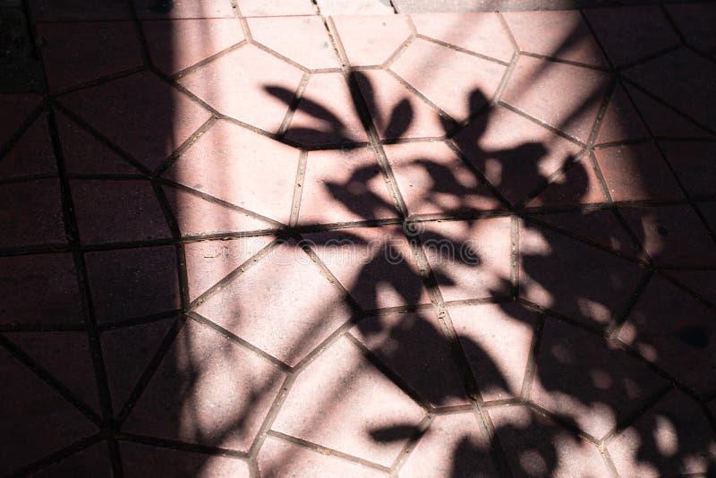 luce ed ombra sul pavimento rosso del cemento del blocchetto del modello fotografia stock