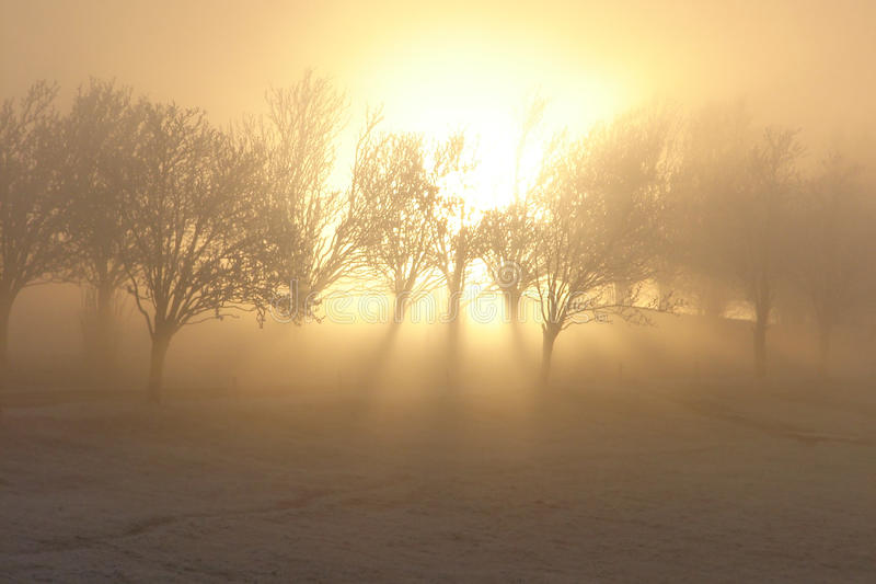Luce magica di inverno immagini stock libere da diritti
