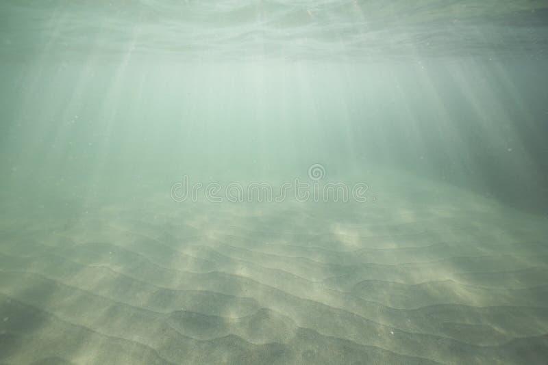 Luce solare che splende attraverso la superficie dell'oceano e che raggiunge il fondale marino immagini stock