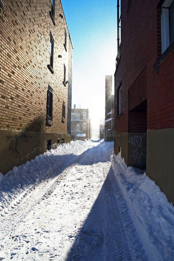 Download Luce Solare Dopo La Bufera Di Neve Fotografia Stock - Immagine di canada, vicolo: 3878828