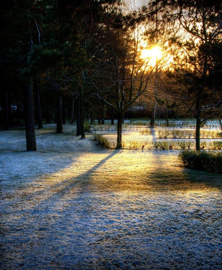 Luce solare ed ombre fotografia stock