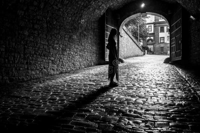 Luce sull'estremità di un tunnel fotografia stock