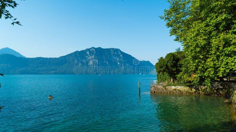 Lucerna do lago em Suíça com uma vista de Burgenbergwald imagens de stock royalty free