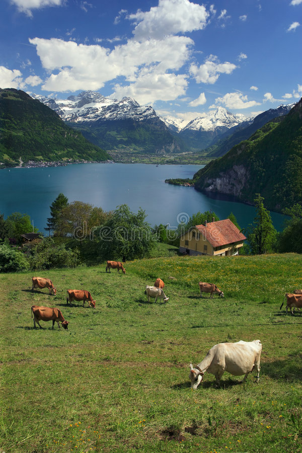 lucerna lake zdjęcie royalty free