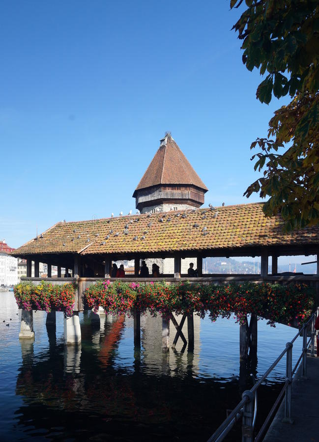 Lucerne royalty free stock images