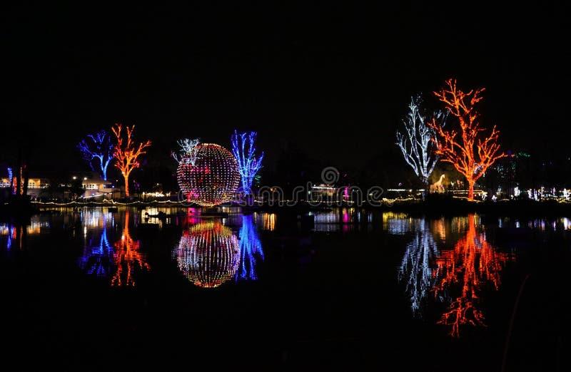 Luces de la Navidad coloridas en el Zoolights del festival de Arizona imagen de archivo